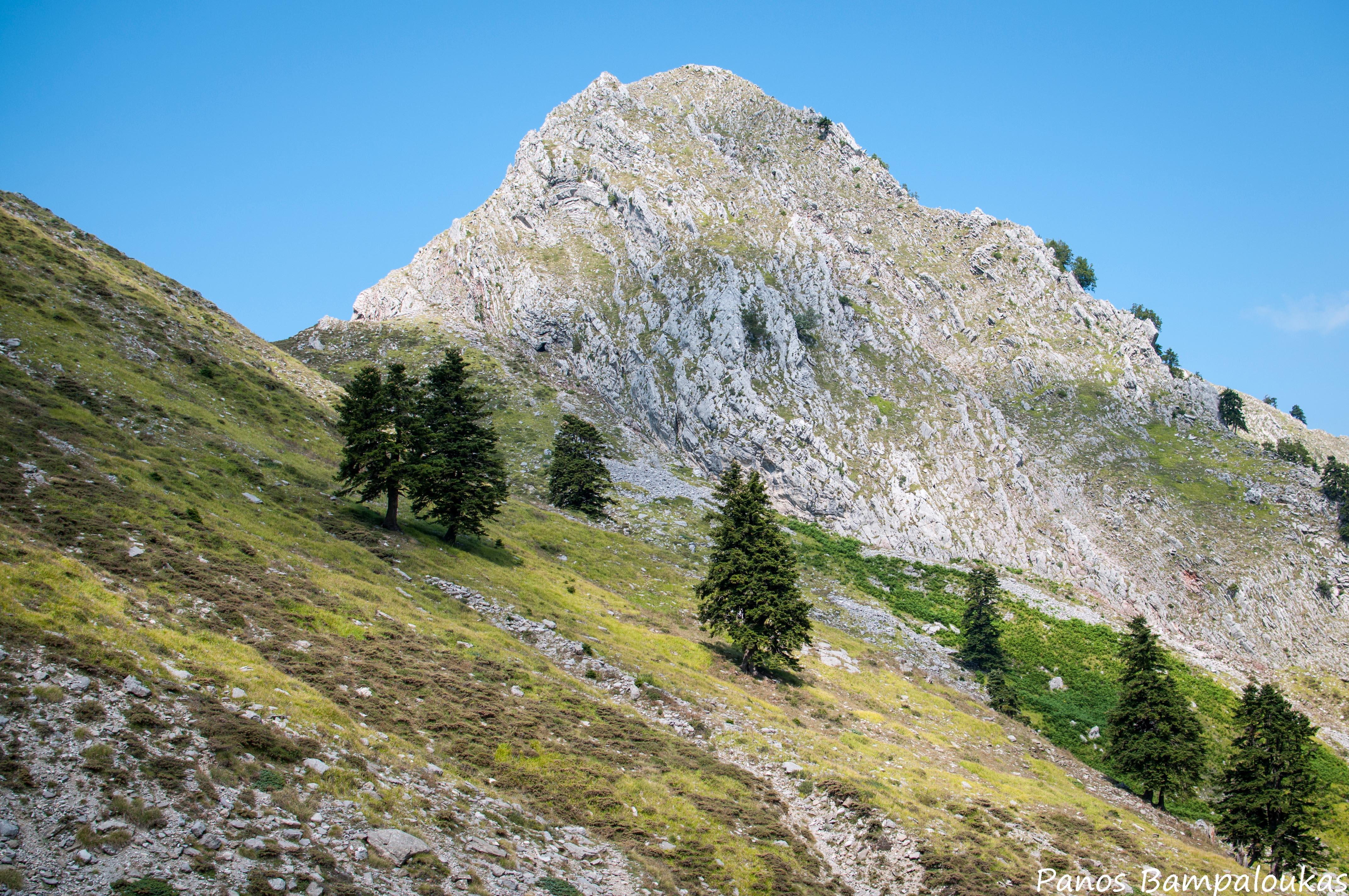 Κορυφή Γιδόκαστρο