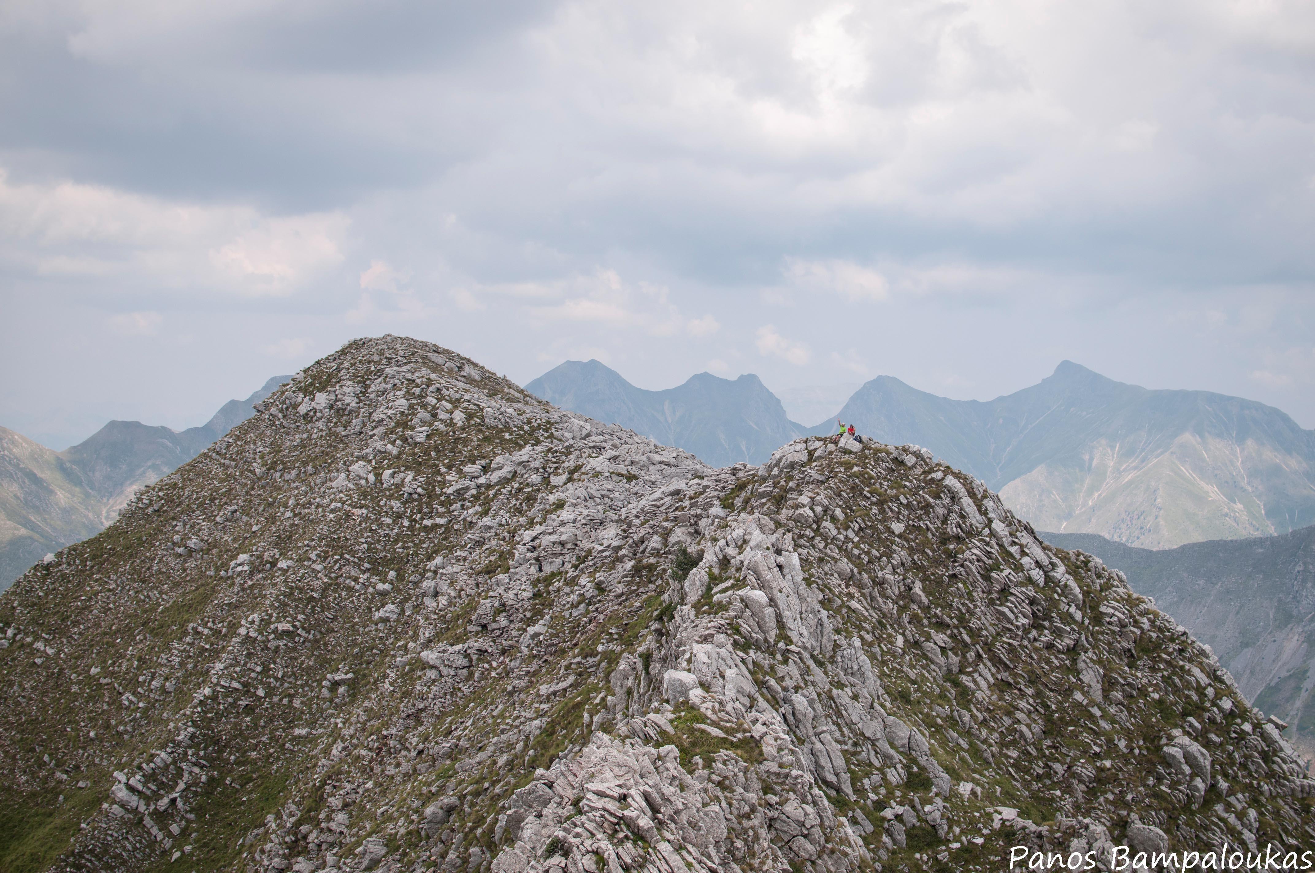 Κορυφογραμμή